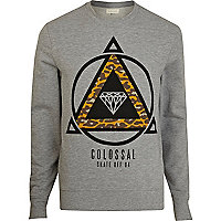 Grey colossal skate print sweatshirt