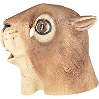 Squirrel novelty head mask