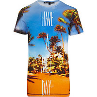 Blue Delta Tribe have a nice day t-shirt