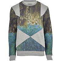 Grey Holloway Road scenic panel sweatshirt