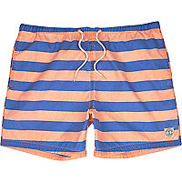 Blue stripe short swim shorts