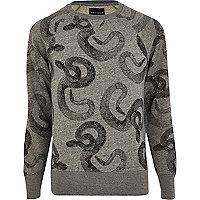 Grey Antioch snake print sweatshirt