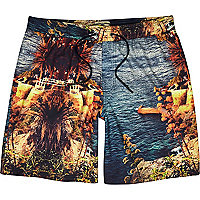 Blue Holloway Road seascape swim shorts