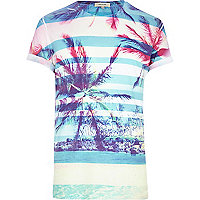 Blue tropical stripe print t-shirt