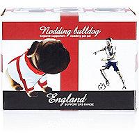 White England supporters nodding dog