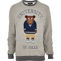 Grey university bear sweatshirt
