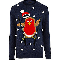 Blue skiing robin jumper