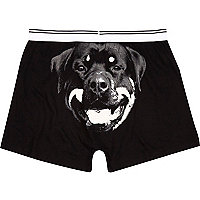 Black Rottweiler back print boxer shorts