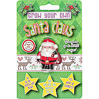 Grow your own santa claus