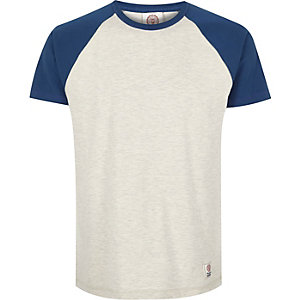 Grey Franklin & Marshall raglan t-shirt