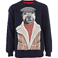 Boys navy Pets Rock cap dog sweatshirt