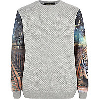 Boys grey tiger print sleeve sweatshirt