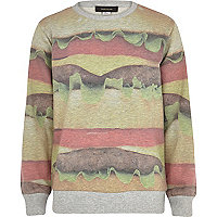Boys grey burger sweatshirt
