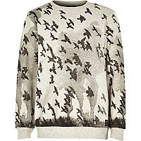 Boys grey bird print sweatshirt