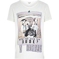 Boys stone have you seen this dude t-shirt