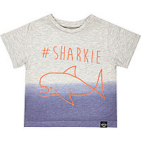 Mini boys hashtag sharkie t-shirt