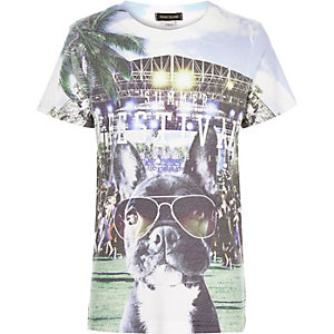 Boys white festival puppy print t-shirt