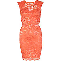 Coral lace panelled bodycon dress
