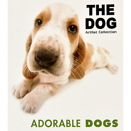 The Dog Artlist Collection book