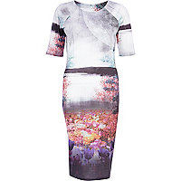 Grey scenic floral print column dress