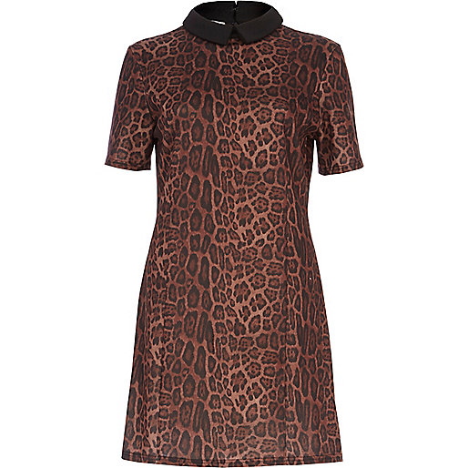 Brown animal print contrast collar dress