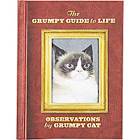 Grumpy cat guide to life book