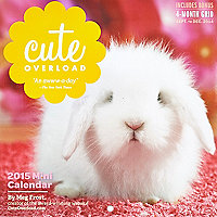Cute animals small calendar