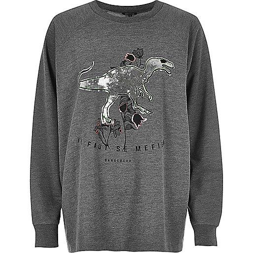 Plus – Grauer Dinosaurier-Pullover mit Pailletten