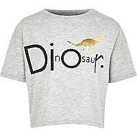 Girls grey dinosaur print slouch t-shirt