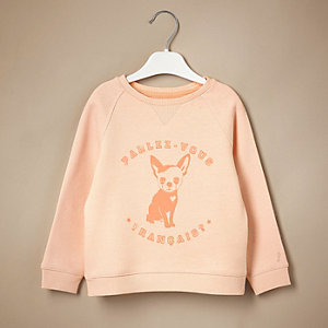 Mini girls dog print sweater
