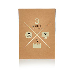 Brown skull notebook set