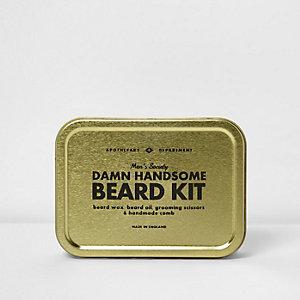 Men's Society – « Damn Handsome Beard Kit' », kit barbe