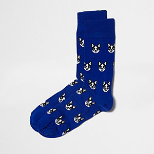 Blue bulldog ankle socks