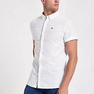 Wit geborduurd Oxford overhemd met zwaluwprint