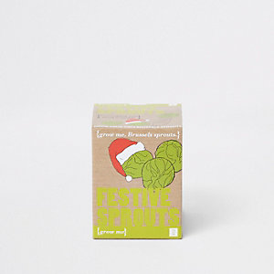 Ecru grow your own festive sprouts set