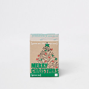 Grow your own Christmas tree Set