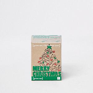 Kit pour faire pousser votre propre sapin de Noël écru