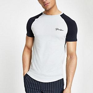 Grijs aansluitend T-shirt met raglanmouwen en prolific-print