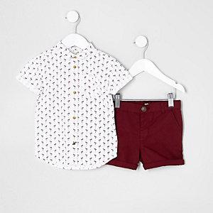 Mini - Outfit met overhemd met flamingo en chinoshort voor jongens