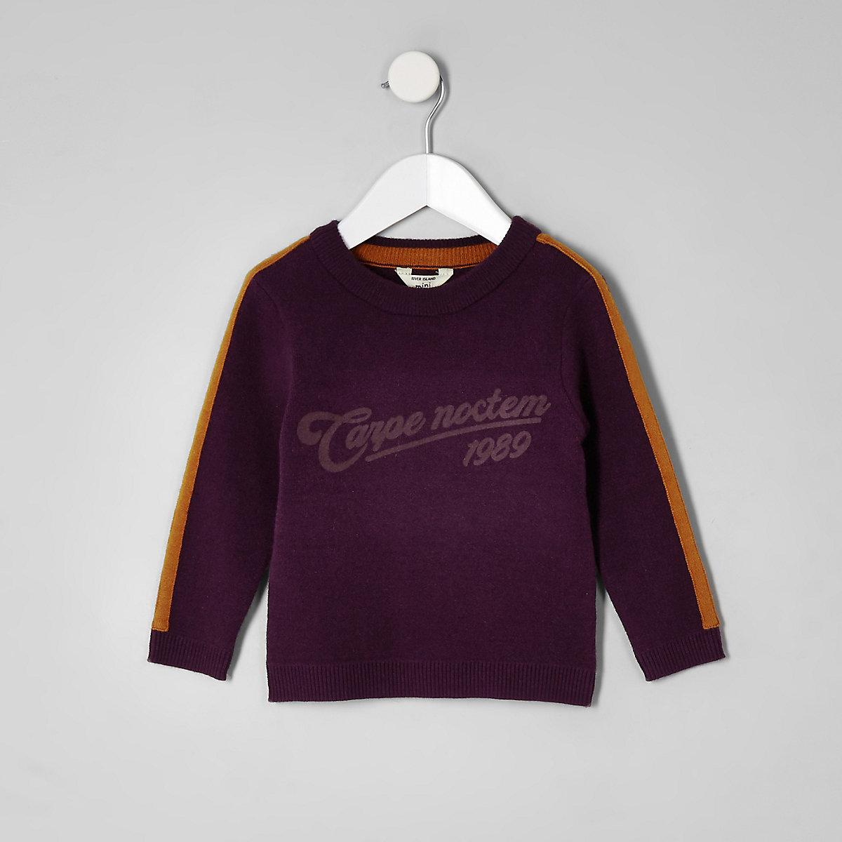 Mini boys purple 'carpe diem' tape sweater