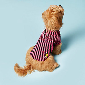 RI Dog roze T-shirt met strepenprint