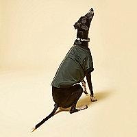 Khaki RI Dog bomber jacket
