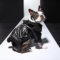 RI Dog black biker jacket