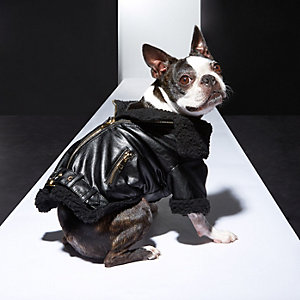 RI Dog black biker jacket