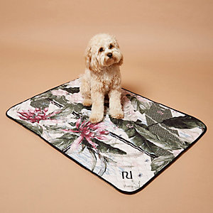 RI Dog pink palm print dog blanket