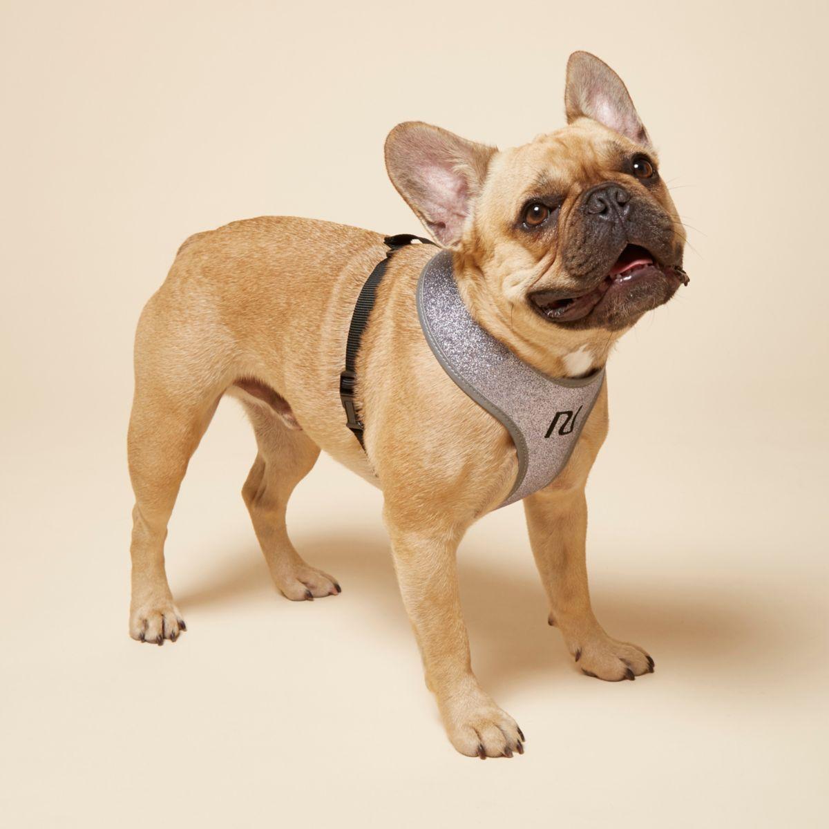 Light purple RI dog glitter harness