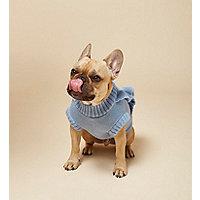RI Dog – Blauer Pullover mit Rüschen