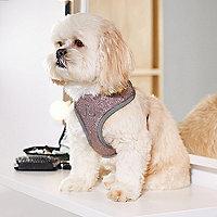 Pink RI Dog glitter harness