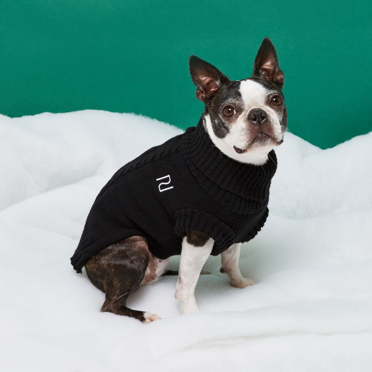 Black RI Dog cable knit jumper