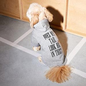 Grey RI Dog slogan print hoodie